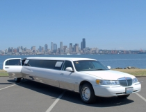 12-pass-lincoln-limo-5