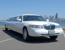 12-pass-lincoln-limo-8